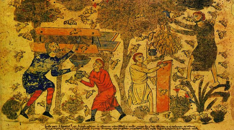 Apicoltura nel medioevo